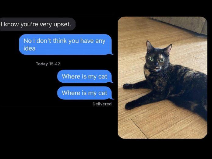 ouders geven kat weg