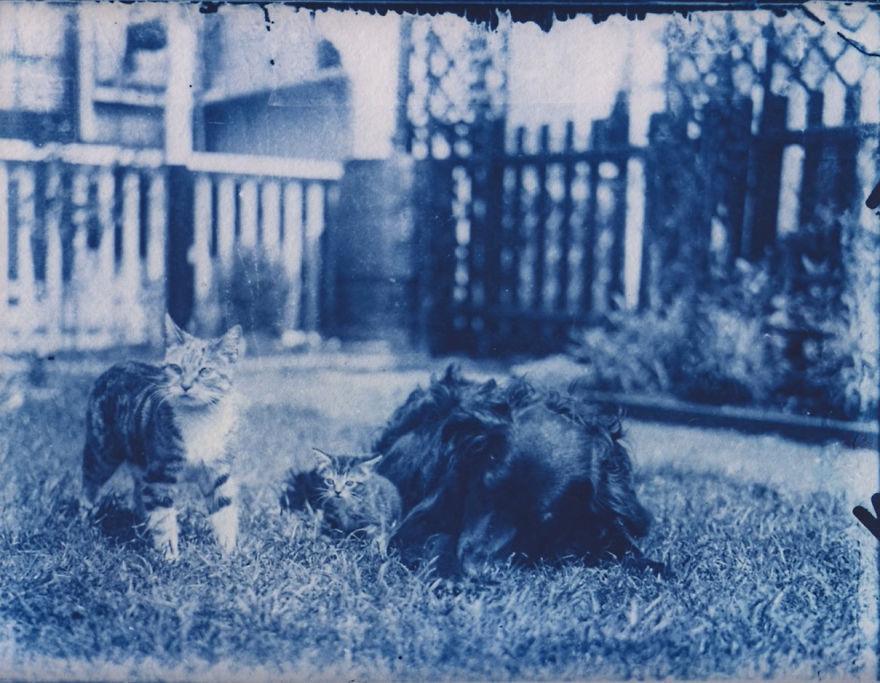 foto 120 jaar